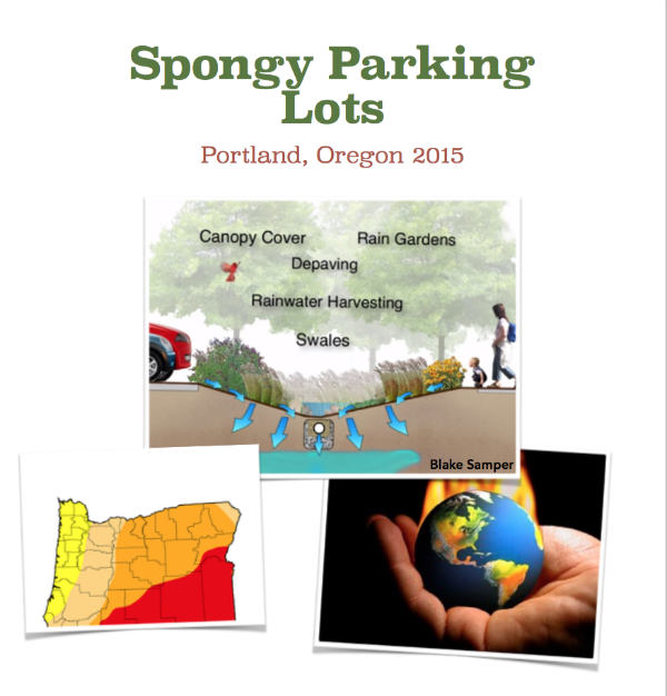 cover for spongy